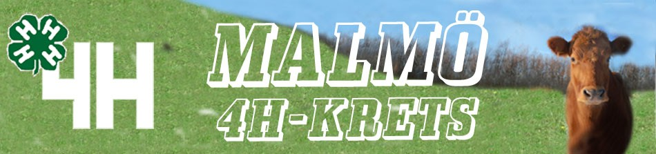 Malmö 4H-krets
